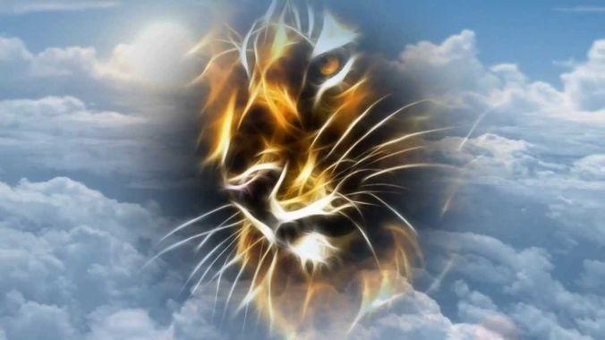 l'Homme, animal & divin
